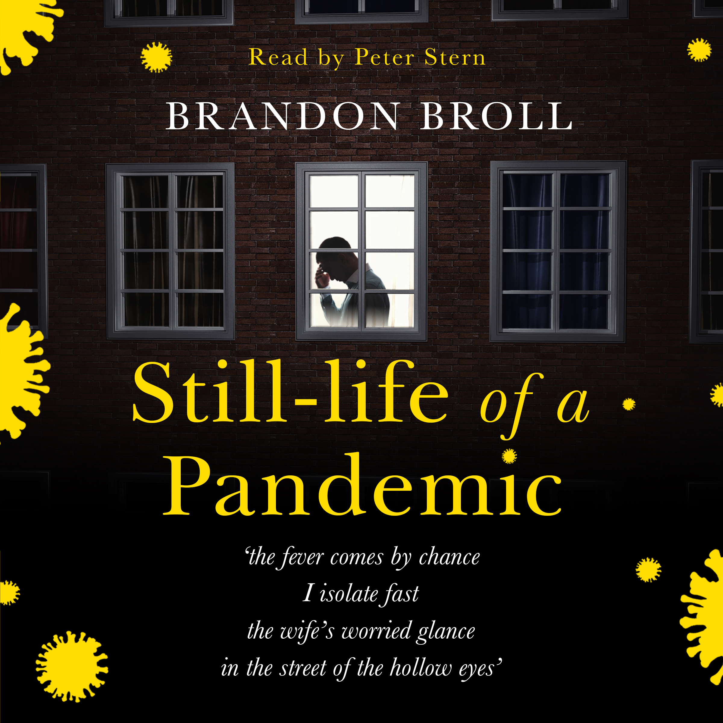 Still-life of a Pandemic_audio